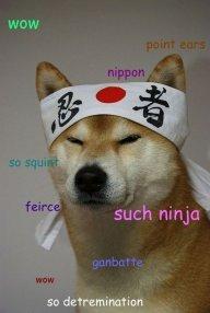ninja_doge2006